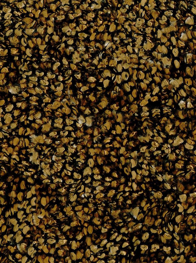dalyn-belize-bz100-gold-rug