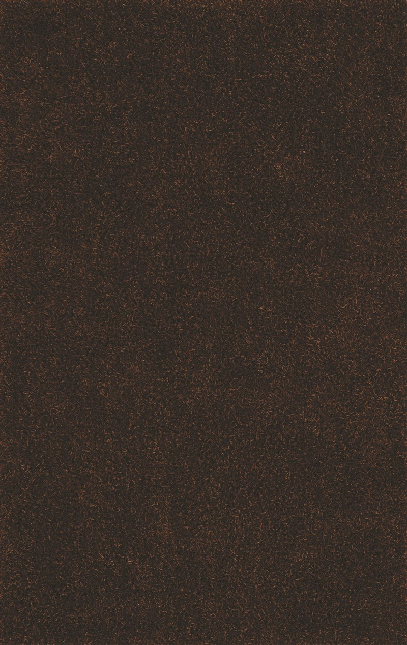 dalyn-illusions-il69-chocolate-rug