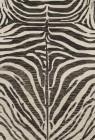Loloi MASAI Contemporary Rugs MAS-01