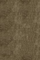 Light Taupe Rug