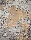 Nourison Prismatic Beige/Silver Area Rug