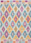 Nourison Passion Multicolor Area Rug