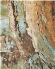 Nourison Prismatic Contemporary Multicolor Rug PRS09