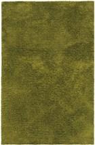 Oriental Weavers Cosmo Shag 81101 Green RUG