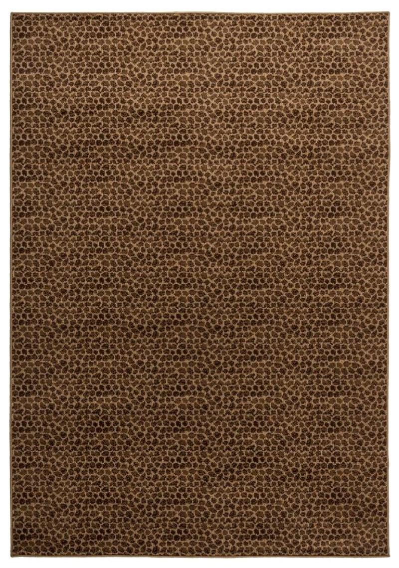 Rizzy Millington  TMG487 brown RUG