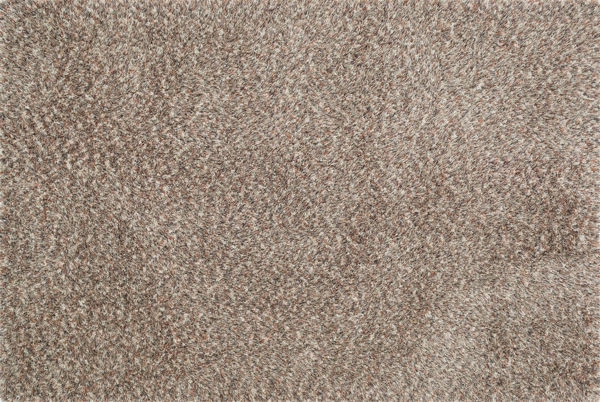 Loloi CALLIE_SHAG CJ01 LIGHT BROWN / MULTI Rug